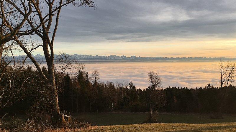 Rehjagd im Kanton Bern
