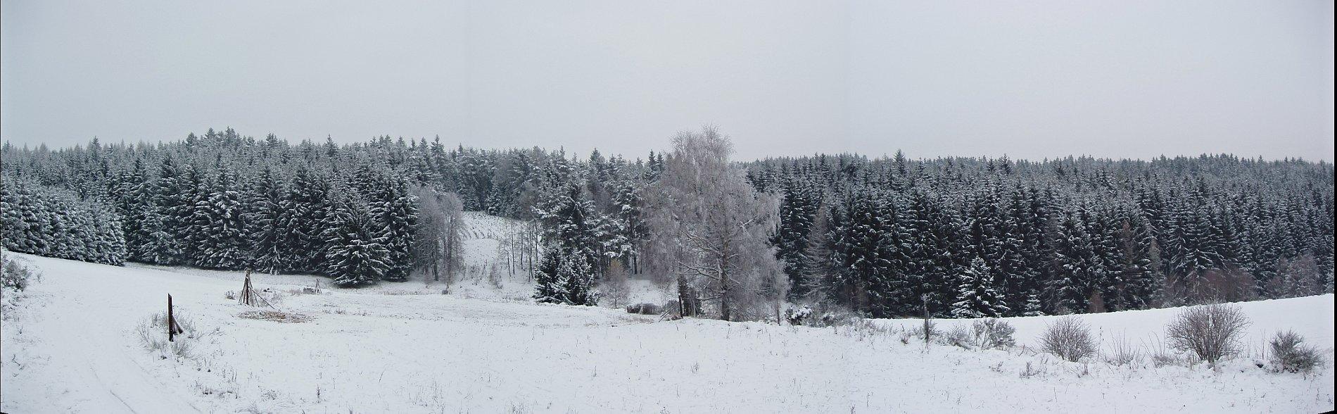 Muffel im Schnee