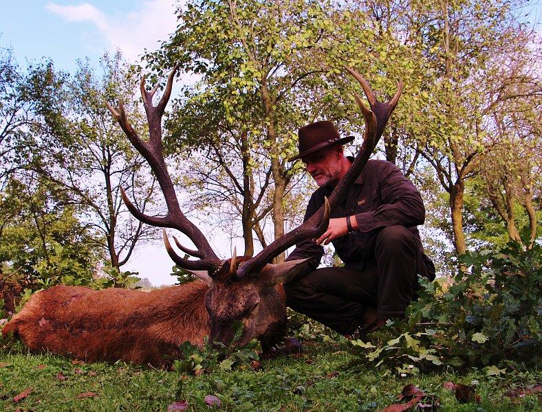 Hirschbrunft in Ungarn