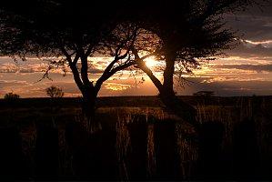 Die schönsten Sonnenuntergänge