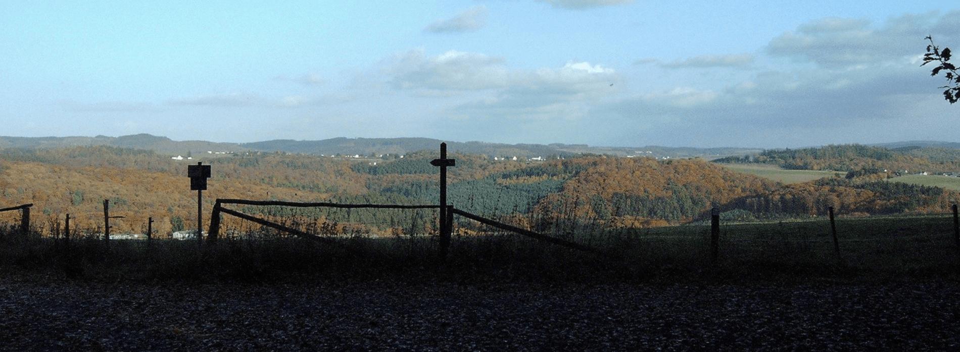 Des Jägers Recht: Schadensersatz und Minderungsanspruch im eigenen Revier