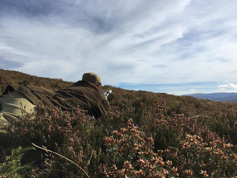 Hirschjagd in den Highlands